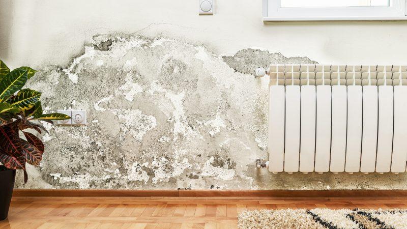 muro di una casa danneggiato dall'umidità